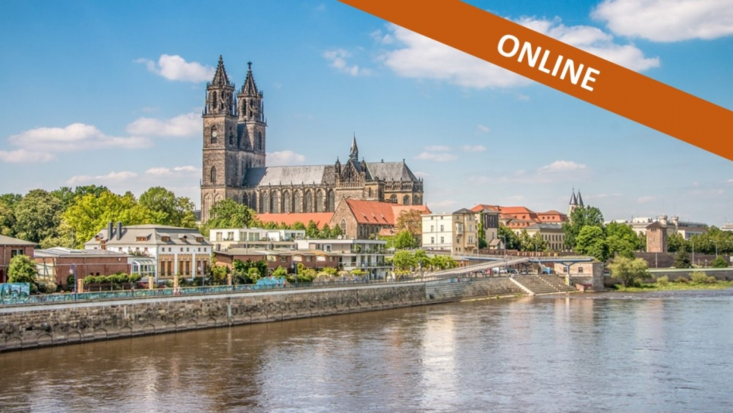 SEU Partner Meeting Magdeburg - 15th May 2020 ONLINE